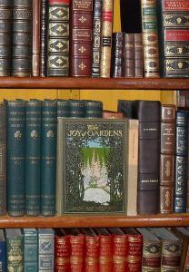 Image, beautiful old books stand in a bookcase.