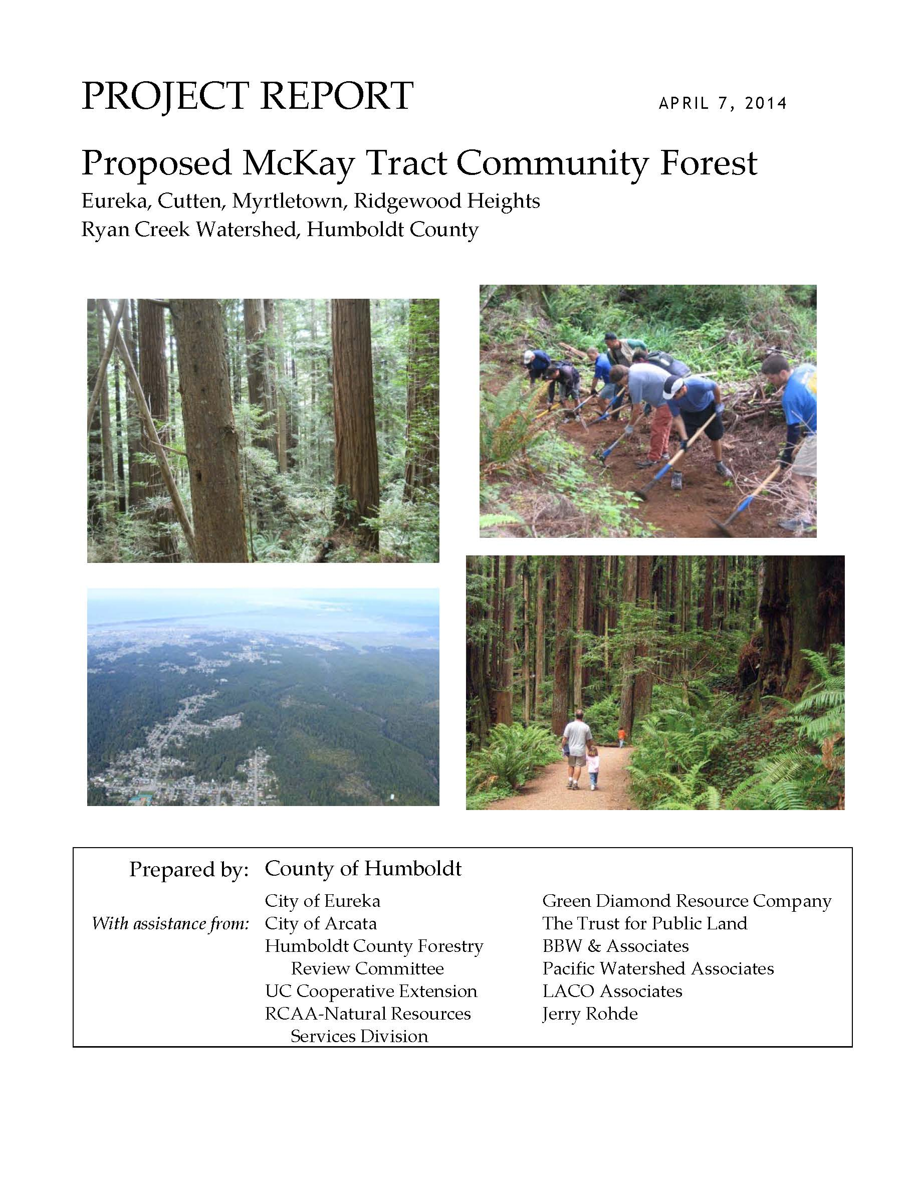 mckay project report