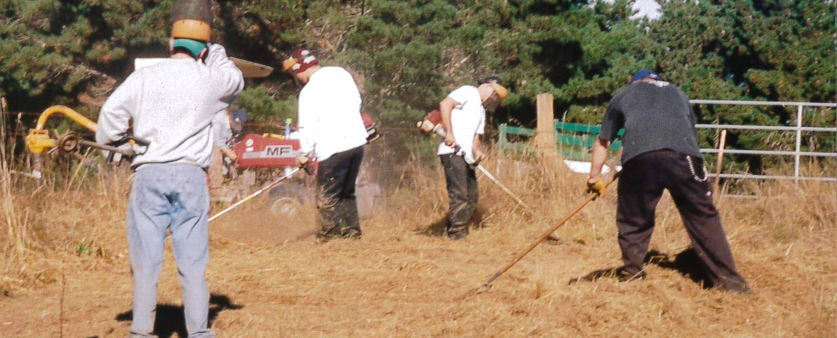 SWAP participants clearing brush