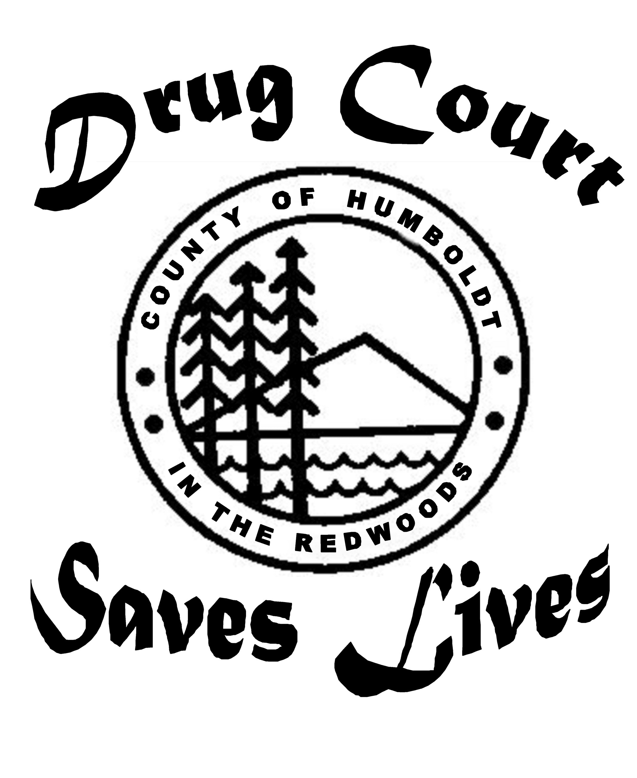 drug court logo