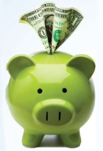 Getting a little tax help can put money back in your piggie bank!
