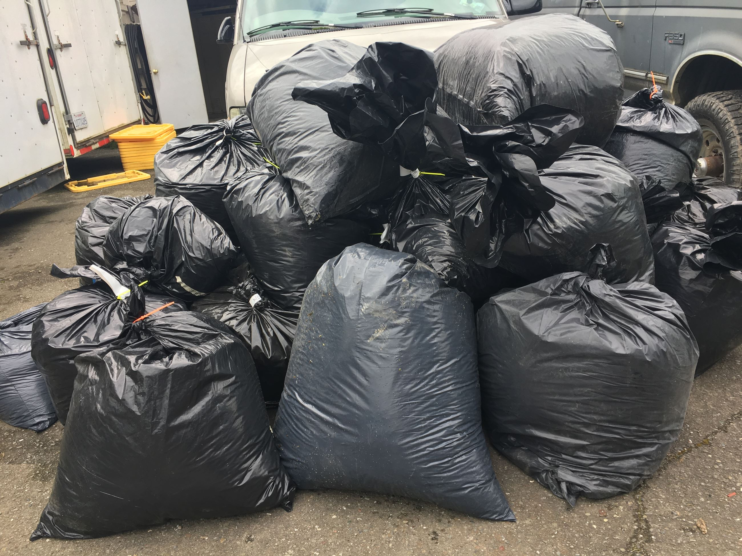 Black trash bags filled with processed cannabis