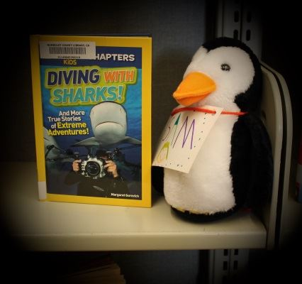 Penguin Sam picked a book about swimming with sharks.