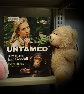 This bear likes Untamed, a book about a favorite scientist.