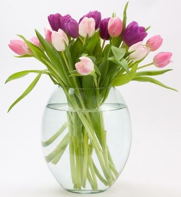 Here's a fresh, lovely vase of tulips to thank our sponsors.