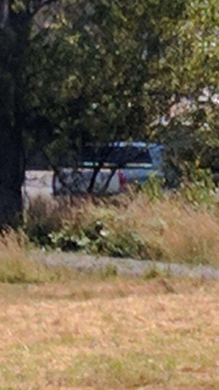 Suspect vehicle tucked in the brush