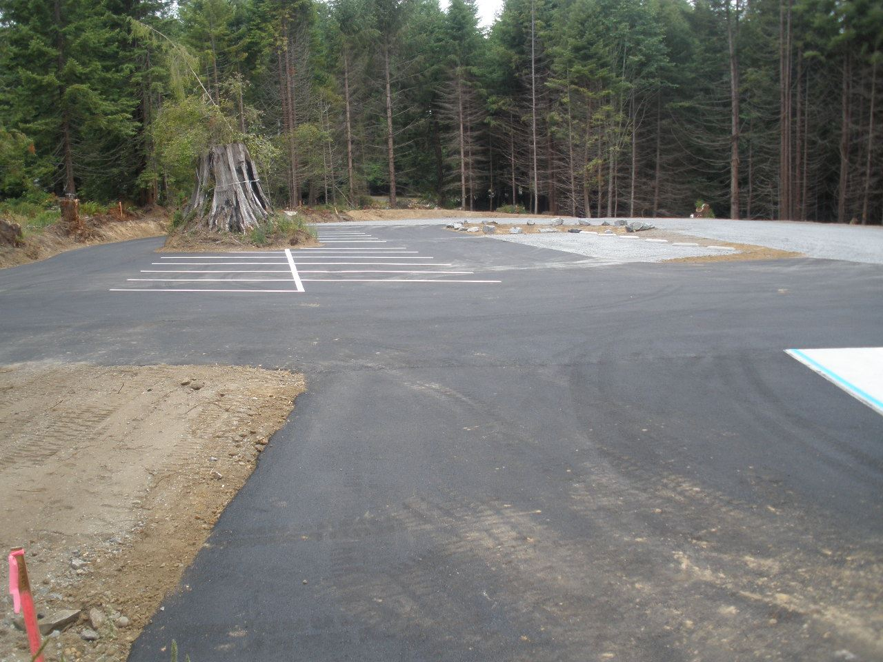 Photo of parking lot off Walnut Drive and Northridge. A cut Redwood tree stump is in the middle of t