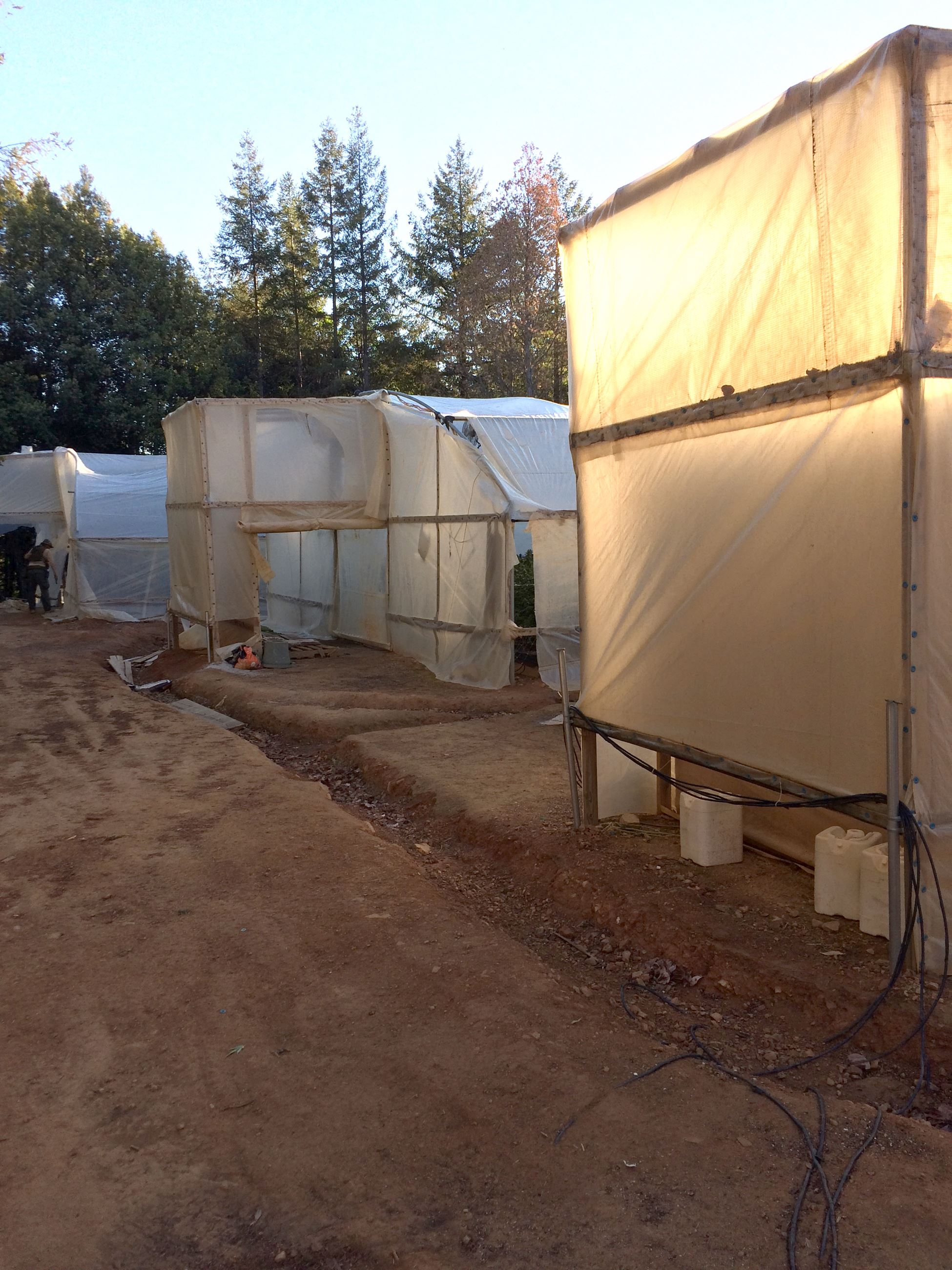 Greenhouses found at the Rancho Sequoia search warrant.