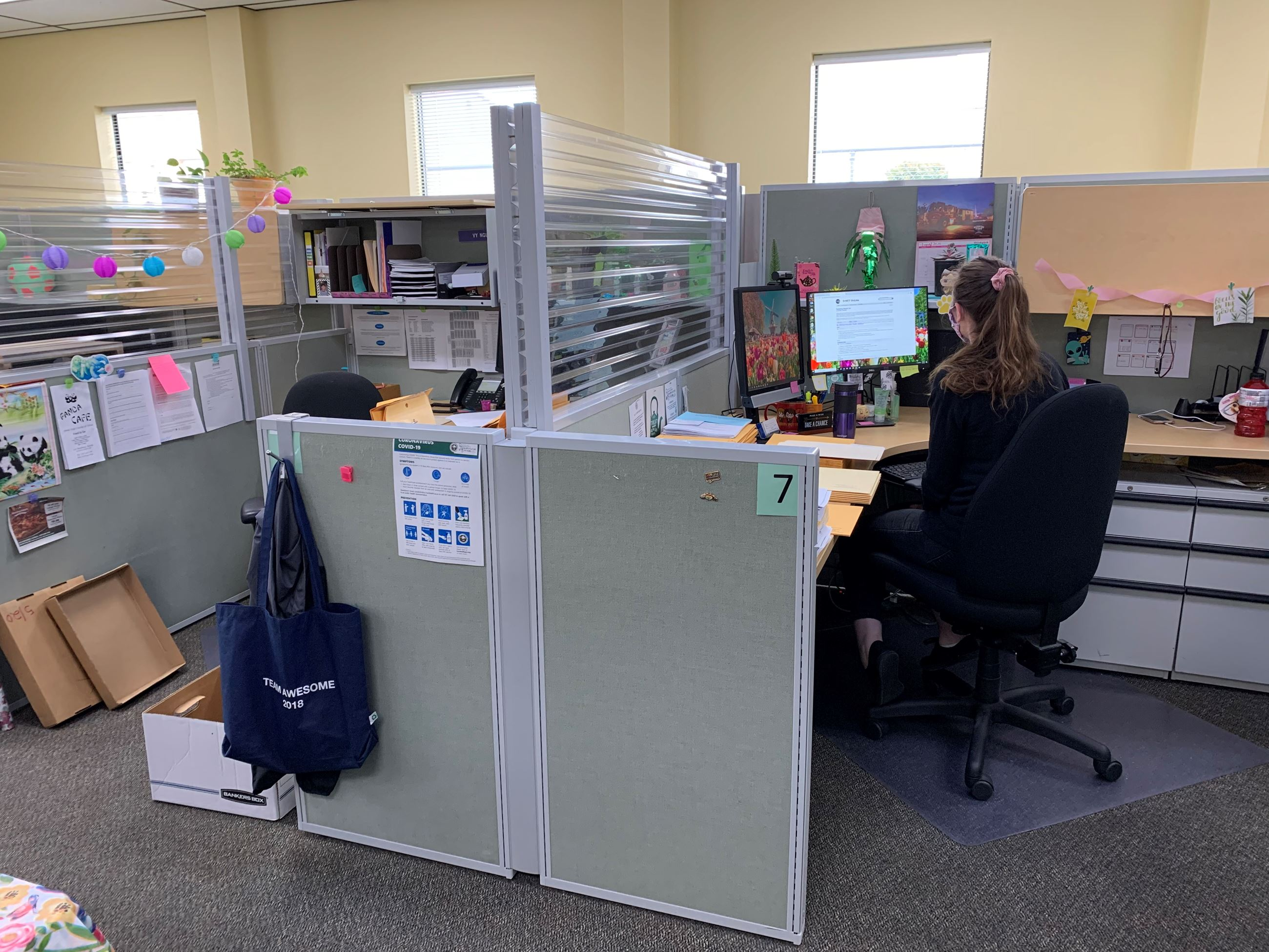 DHHS employee at Koster campus at her workstation featuring dividers installed by Helping Humboldt