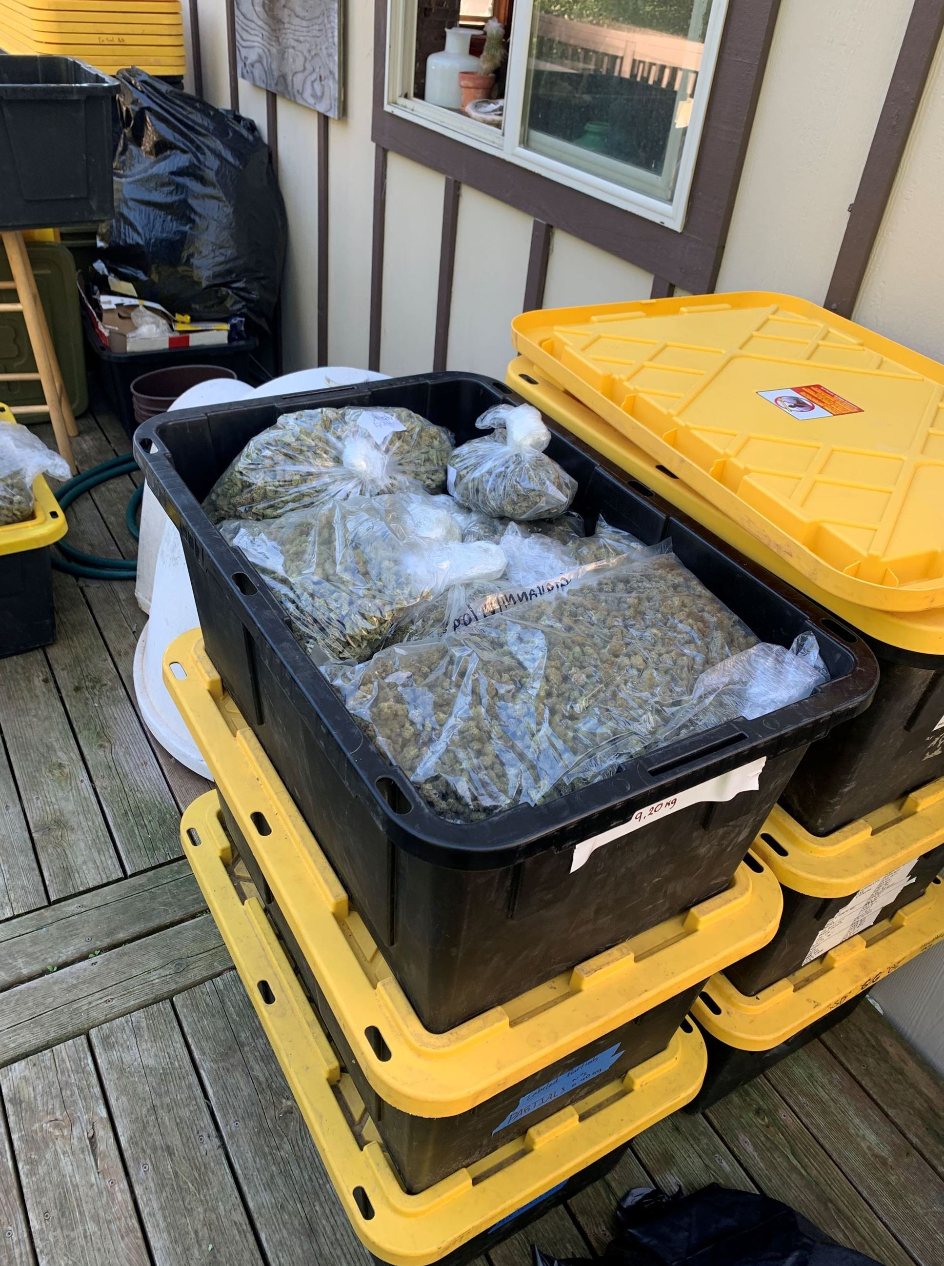 Black and yellow tote filled with packaged cannabis