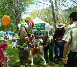 Characters at Firewise Fair